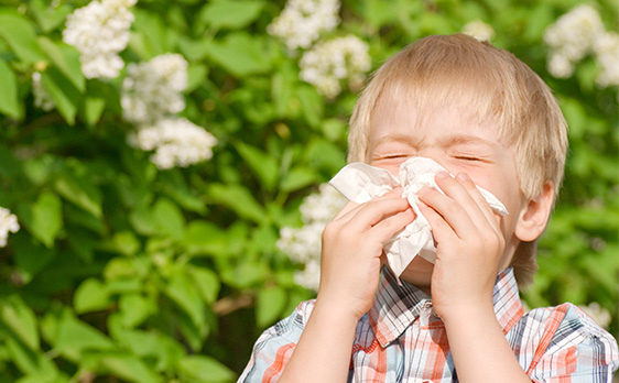 picture of boy with allergy